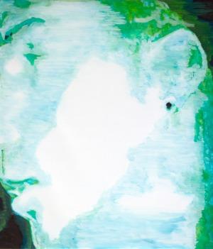 night vision - 46,5 x 73 - 2017 - huile sur toile